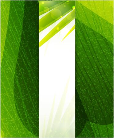 background nature: Vector green leaf texture