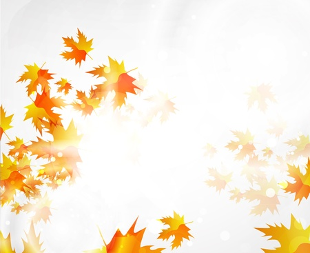 autumn background: Autumn vector abstract background