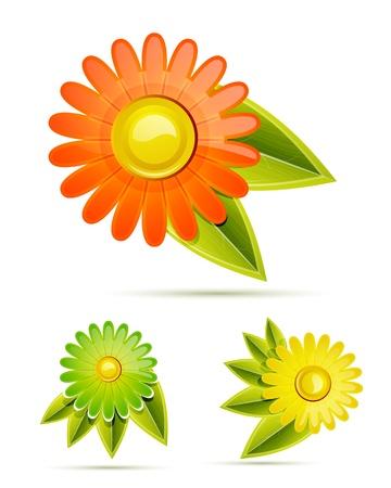 Vector glossy flowers Vector