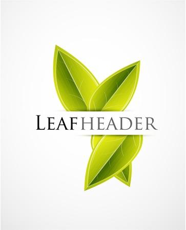 feuille arbre: Les feuilles vertes de fond