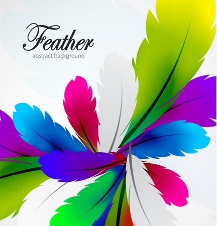 oiseau dessin: Vecteur de fond de plumes colorées