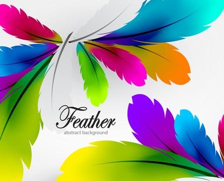 piume: Vettore sfondo piuma colorata Vettoriali