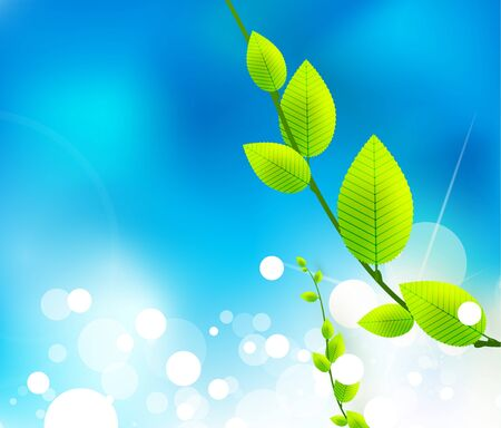 fresh nature background photo