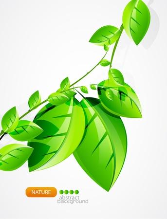 green environment: Nature background Illustration
