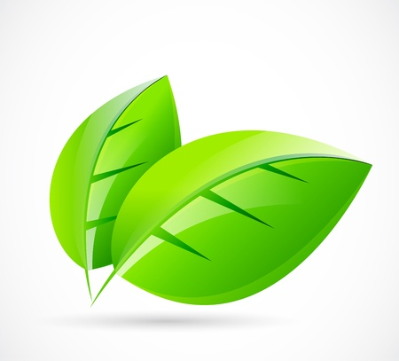 Vector green leaf concept Stock Vector - 11931431