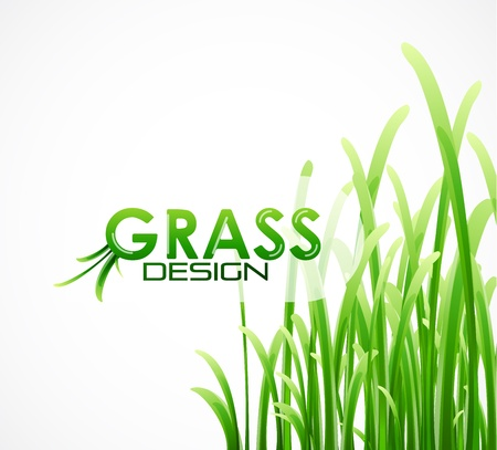 grass background Stock Vector - 12492345