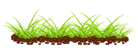 Vector grass design template Vector