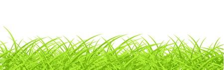 Vector grass design template Stock Vector - 13190949