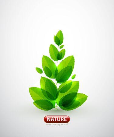 Green leaf summer tree Vector