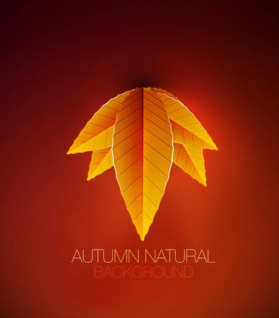Autumn leaves concept nature background photo