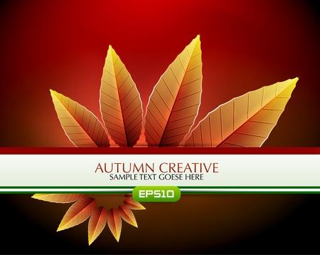 creative autumn background photo