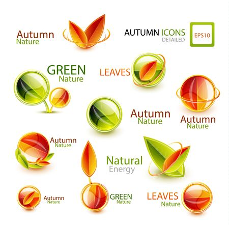 Autumn design elements Vector