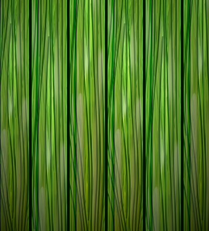 planche de bois: Fond de bois