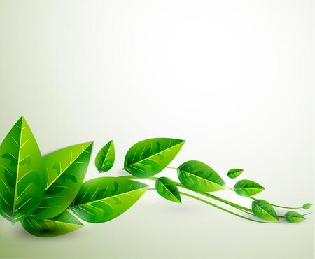 Natuur groene bladeren Vector vliegende bladeren abstracte achtergrond