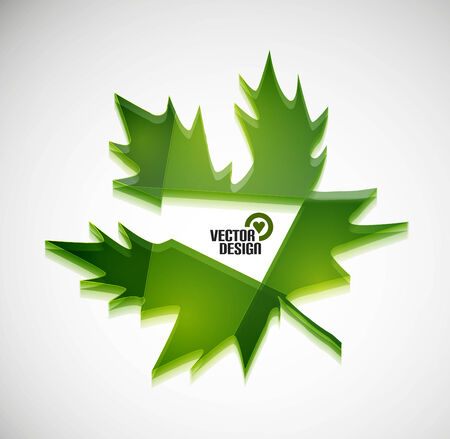 Vector 3d green glossy leaf Vector