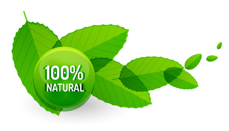 hundred: Green eco concept - 100 percents natural. Vector icon