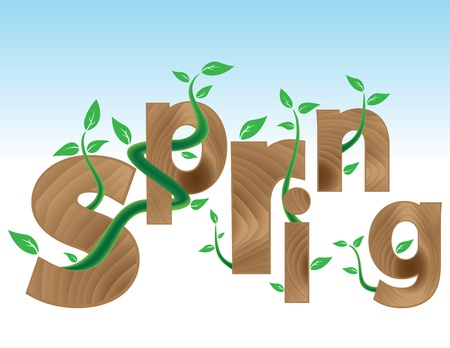 Wood textured Letters SPRING with new green leaves. Spring concept.