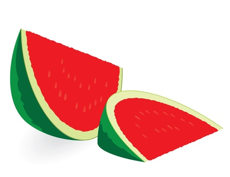 Watermelon slices isolated on white Vector