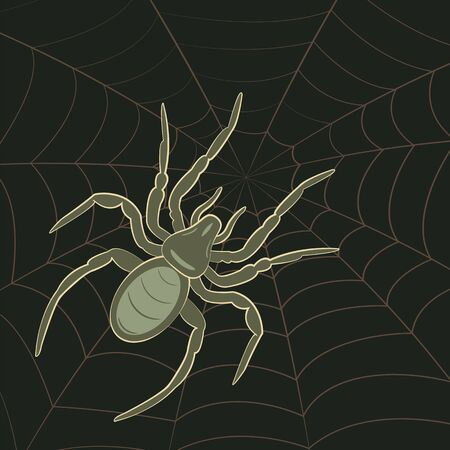 cobwebby: Abstract Spider on Spiderweb