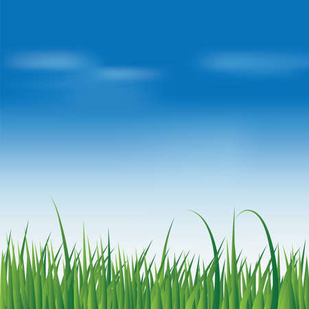 vernal: Spring fresh green grass over blue sky background