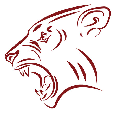 aggressive wildcat  tattoo  Vector