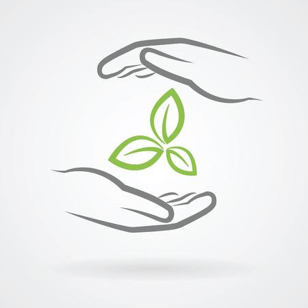 Руки с зелеными листьями значок в области охраны окружающей среды Понятие векторной иллюстрации.