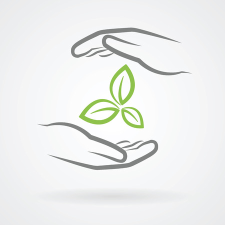 hands holding plant: Hands with green leaves icon as environmental protection concept vector illustration.