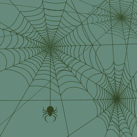 spiderweb: spiderweb with spider background square vector illustration