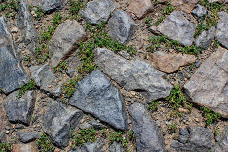 Old abandoned road. Fragment of an  grass-covered cobblestone pavementGranite stones laid in the form of paving stones. Grass grew between the stones. Cobblestones in the form of uneven squares. Sunlight illuminates the clutch. Background, backdrop or texture. Imagens