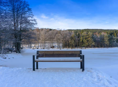 Empty wooden bench on the shore of a frozen lake .Winter day .Norway.Bench on the shore of a frozen lake. Trees on background.
