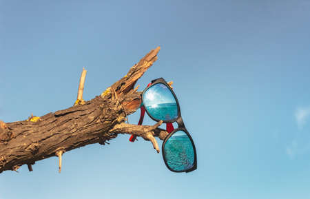 Sunglasses on a wilted branch reflect an empty seashore. Blue bright sky. The concept of a failed vacation or take a rest. Coronavirus pandemic and travel ban.