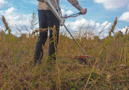 A worker cuts huge weeds with a brush cutter. The figure of a farmer holding a trimer. Back view. Close-up of weeds in a yard or field. Sunny day, blue sky. Small viewing angle.