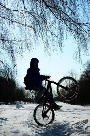wheelie: Silhouette of cyclist doing wheelie on snowy road, extreme winter cycling on mountain bike, tree branches and blue sky on background