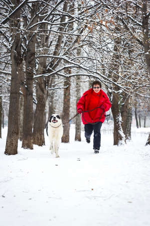 Happy adult women jogging with big white dog in winter snowy woods, pedigree shepherd Alabai