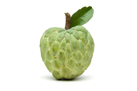 Custard apple or sugar apple, whole ripe exotic tropical fruit with green leaf isolated on white background, healthy food, diet and vegetarian nutrition