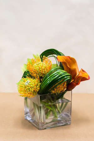 Floral arangement with Mango Calla Lilies, Cymbidium orchids, Protea yellow pin cushion and greenery in square vase photo