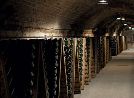 Epernay Champagne Cellar with bottles photo