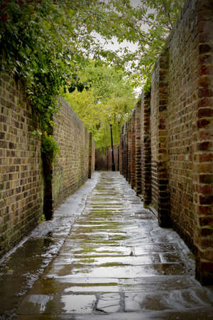 narrow: Alleyway with rain soaked pavement