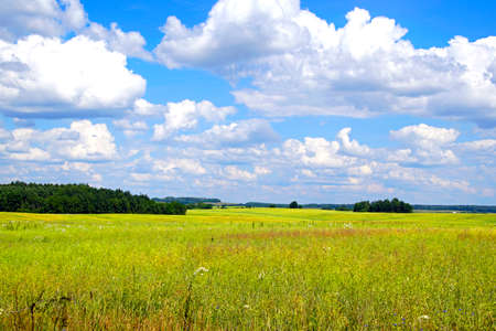 Noon in June. Expanses. The Belarusian landscape. Horizon Space. Beautiful view of the fields and coppice on a sunny day