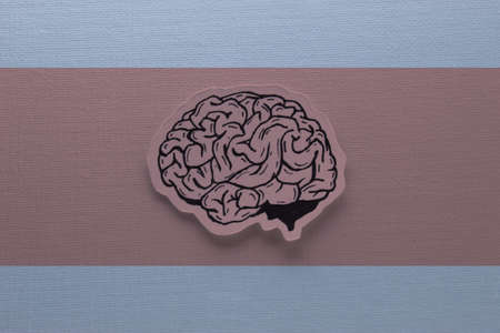 Human Brain Hand Drawn Inked Paper Cutted Art