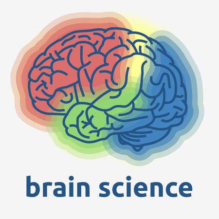 Gráfico vectorial de diseño temático de ciencia del cerebro humano.