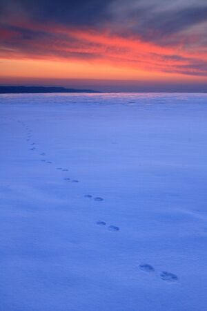 Frozen River, traces of ice lead to a sunset sky photo