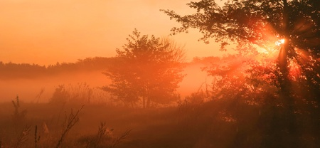 haze: The first rays of the rising sun
