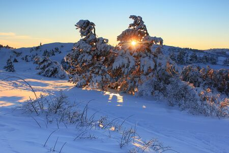 Cold winter in the foothills of the Alps photo