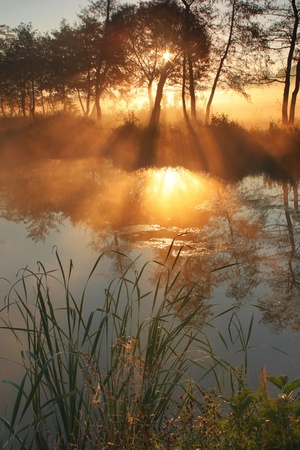 early summer: The suns rays pass through the fog and reflected in the lake Stock Photo