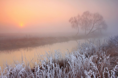 Misty morning with frost on the river in early spring