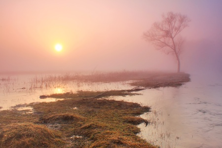 early fog: Misty morning on the river in early spring Stock Photo