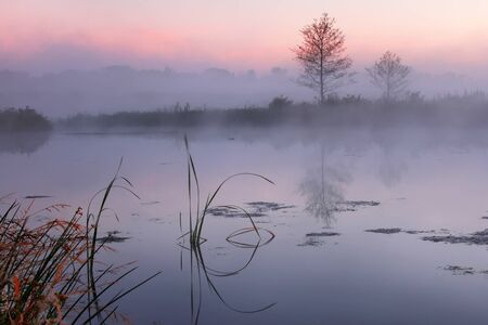 Misty morning on a small lake
