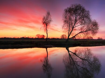 Reflection of trees in river at dawn