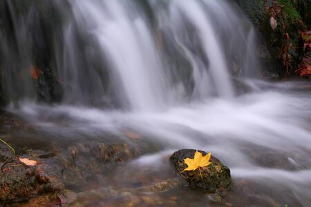 Autumn waterfall with maple leaf photo